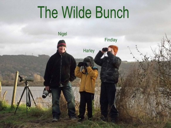 01.01.13. The Wilde Bunch, Frodsham Marsh. WSM.