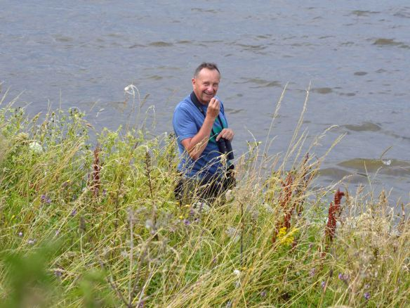 26.07.14. Tony Broome, Weaver Bend, Frodsham Marsh