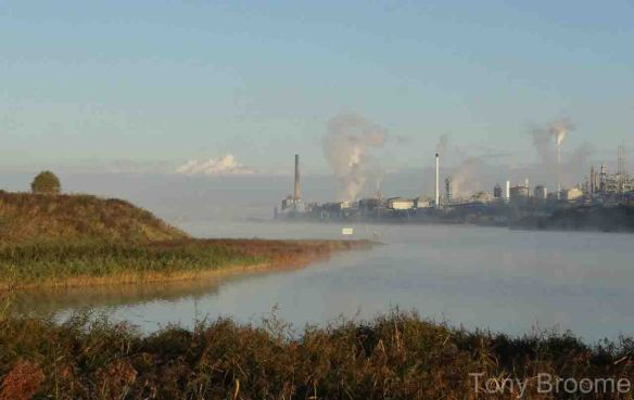 12.10.14. Misty Weaver estuary, Frodsham Marsh. Tony Broome.