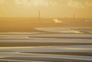 30.11.14. Mersey Estuary from Runcorn Hill. Bill Morton