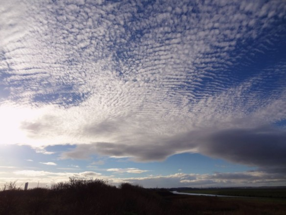 22.11.14. Makeral Sky, Frodsham Marsh. Tony Broome.