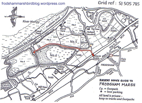 Frodsham Marsh Map