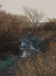 13.12.14. track to No.4 tank, Frodsham Marsh. Tony Broome