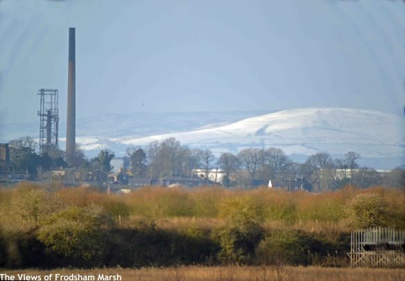 31.01.15. Welsh hills from Frodsham Marsh. Bill Morton