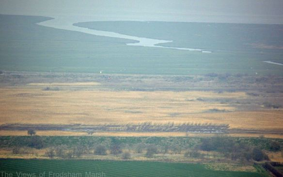 20.03.15. Frodsham Marsh from Helsby Hill,,,