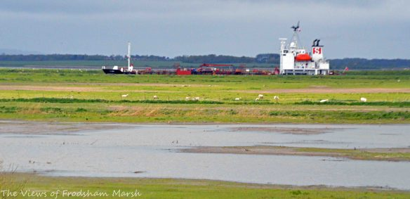 25.04.15. Ship sailing through No.3 tank, Frodsham Marsh. Bill Morton