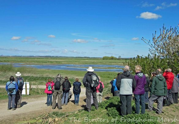 26.04.15. Frodsham Festival of Walks, No.3 tank, Frodsham Marsh. Bill Morton