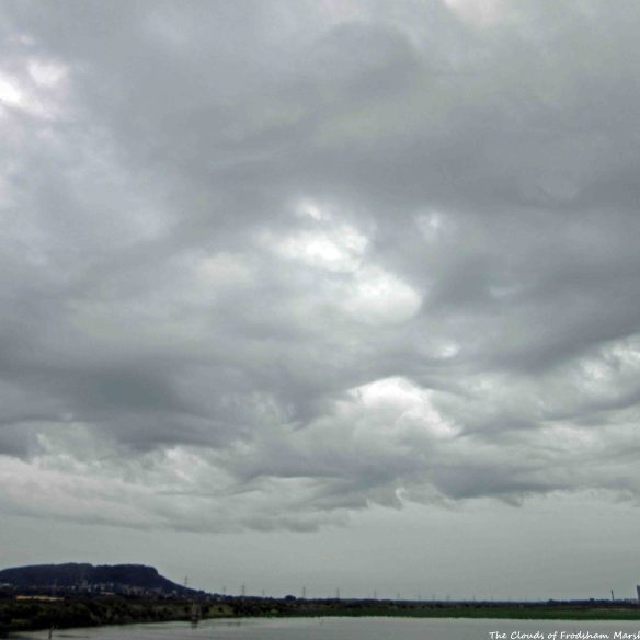 26.07.15. Honey comb clouds formed just before the rain came, No.6 tank, frodsham Marsh. Bill Morton