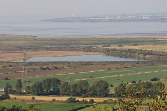 02.10.15. Frodsham Marsh from Frodsham Hill. Tony Broome (4)