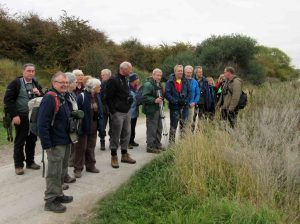 18.10.15. Chester RSPB field trip to Frodsham Marsh. Bill Morton