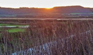 21.11.15. Sunrise over Frodsham Hill from Frodsham Marsh. Tony Broome