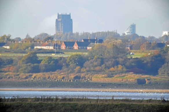 07.11.15. Liverpool from Frodsham Marsh. Bill Morton