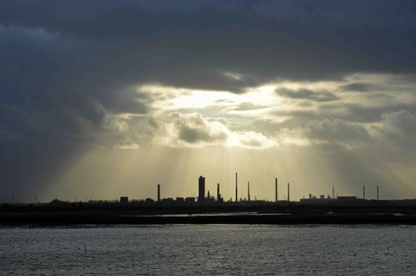 22.02.16. Sunlight over the Growhow works from No.6 tank, Frodsham Marsh. Bill Morton (1)