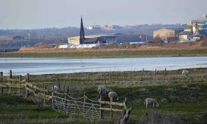 28.02.16.Christchurch from Marsh Farm,, Frodsham Marsh. Bill Morton (6)
