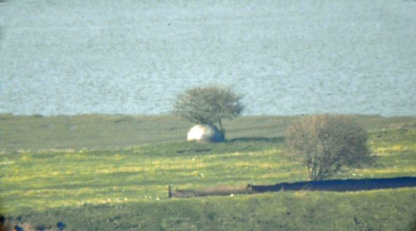 20.03.16. Allan Williams WW2 gun turret, Frodsham Marsh from Helsby Hill. Bill Morton.