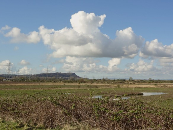 17,04.16. View from the I.C.I tank looking south-west to Helsby Hill, Frodsham Marsh. Tony Broome.