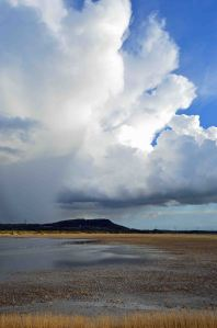 26.04.16. Storm over No.6 tank and Frodsham and Helsby Hill, Frodsham Marsh. Bill Morton (21)