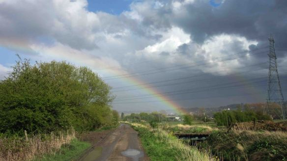 02.05.16. Rainbow over Moorditch Lane, Frodsham Marsh. Bill Morton (3)