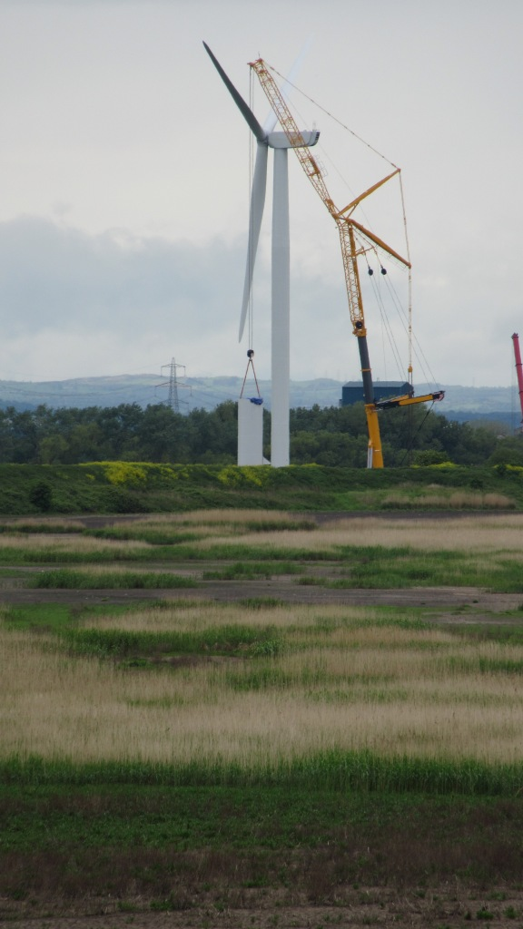 21.05.16. Turbines, Lordship Marsh, Frodsham Marsh. Bill Morton (1)