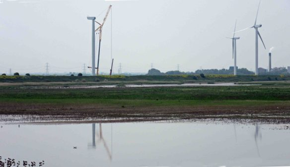 28.05.16. 5th turbine on Lordship Marsh from No.6 tank, Frodsham Marsh. Bill Morton (4)