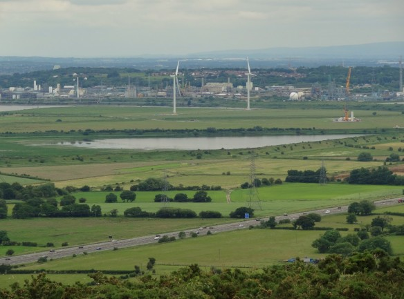 18.06.16. Frodsham Marshes from Helsby Hill. Tony Broome (5)