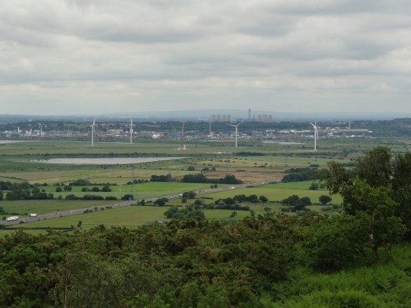 18.06.16. Frodsham Marshes from Helsby Hill. Tony Broome (6)