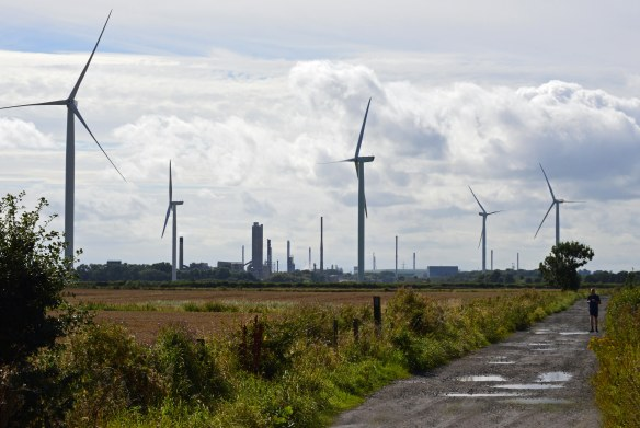 21.08.16. Turbines from Lordship Lane, Frodsham Marsh. Bill Morton (1)