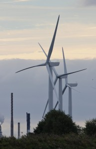 18-09-16-buzzard-and-wind-turbines-frodsham-marsh-tony-broome-1
