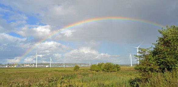 25-09-16-rainbow-over-turbines-and-no-5-tank-frodsham-marsh-bill-morton-2