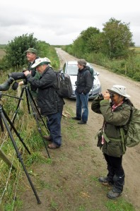 01-10-16-mna-looking-over-no-6-tank-frodsham-marsh-bill-morton