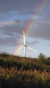10-10-16-rainbow-and-turbines-frodsham-marsh-bill-morton-4